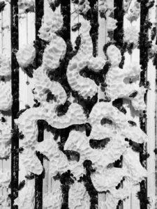 Kunst, Partizipation und Bienen – Fachtagung Moabees