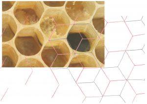 Floating Pollen – Aerosol im Körnerpark